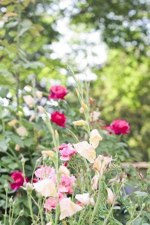 Atlanta Botanical Garden Wedding Venue