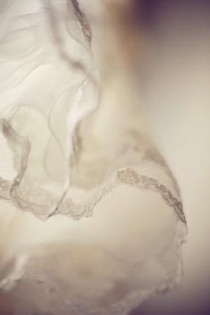 Lace Trimmed Veil Detail