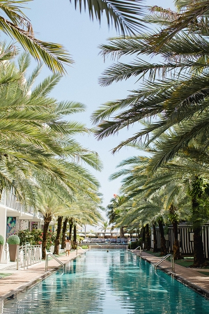 Miami Hotel Wedding Venue Elaine Palladino Photography
