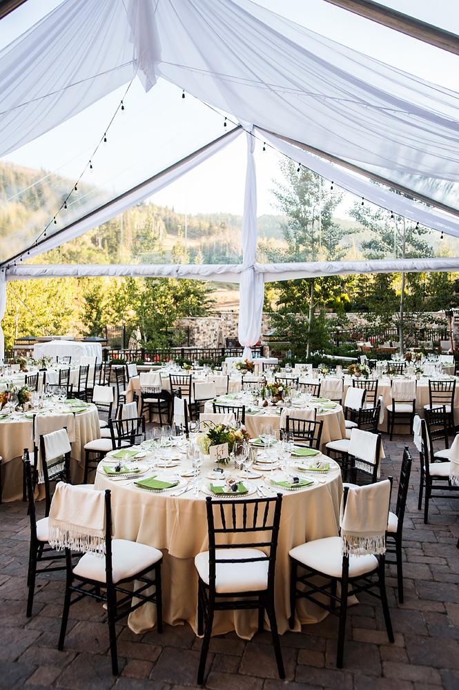 Outdoor Tent Reception Venue Ideas - Elizabeth Anne ...