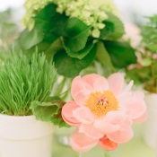 Small Greenery and Flower Centerpiece