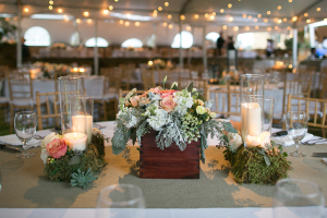 Floral Dusty Miller and Moss Arrangements in Wooden Boxes