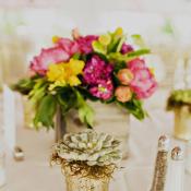 Succulent in Gold Vase