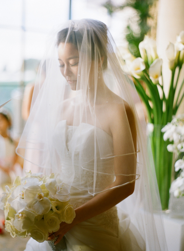 Classic Sheer Cathedral Length Veil