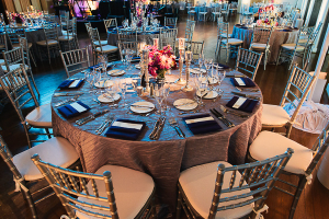Silver and Blue Reception