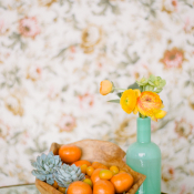 Clementine Succulent and Citrus Rose Vignette