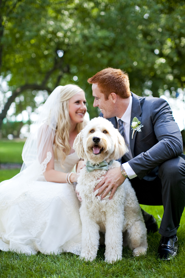 Dog In Bow Tie For Wedding Ceremony Elizabeth Anne Designs The Blog