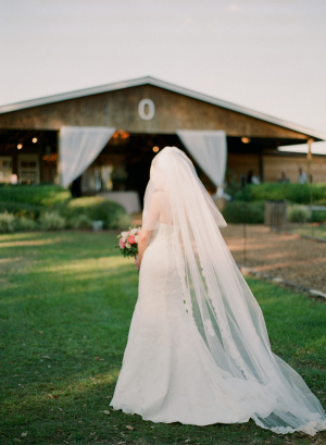 Long Sheer Veil With Lace Trim