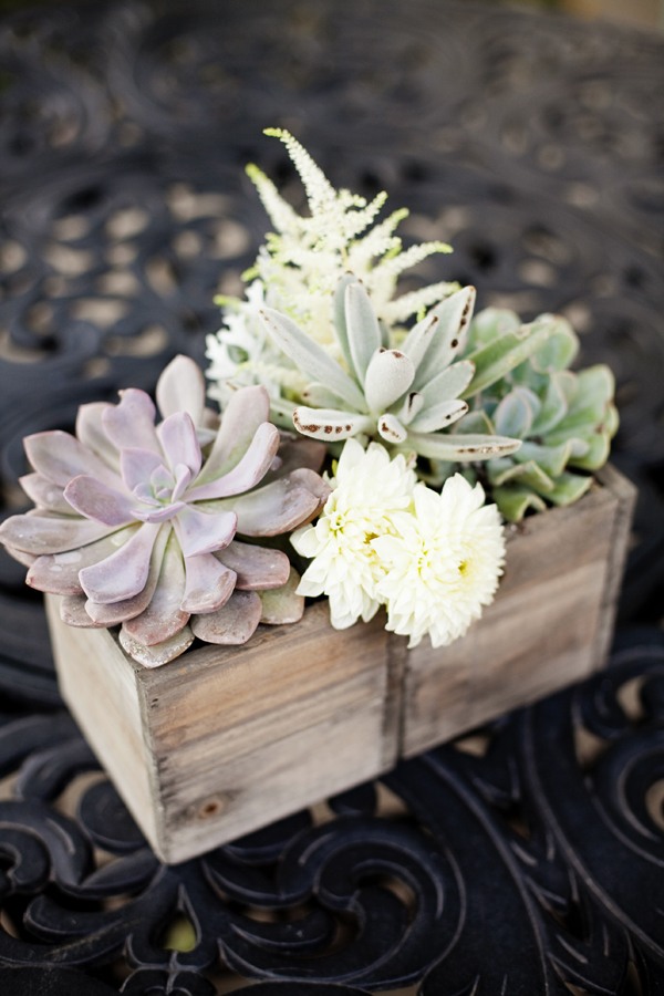 Succulents In Wooden Box Table Decor Elizabeth Anne
