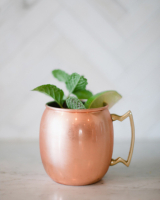 Moscow Mule Vintage Cocktail