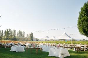 Outdoor Farm Reception