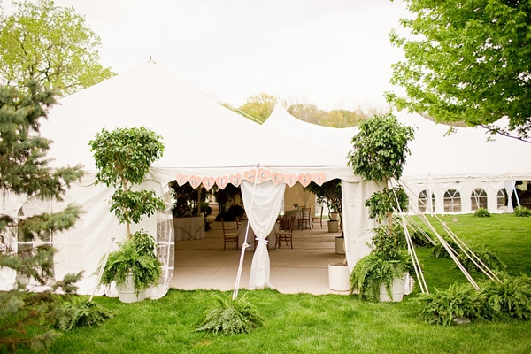 Tented Backyard Wedding Reception - Tented Backyard Wedding Reception - Elizabeth Anne Designs: The