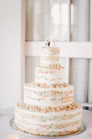 Unfrosted Funfetti Cake