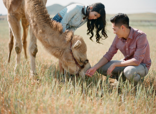 Couple With Camel