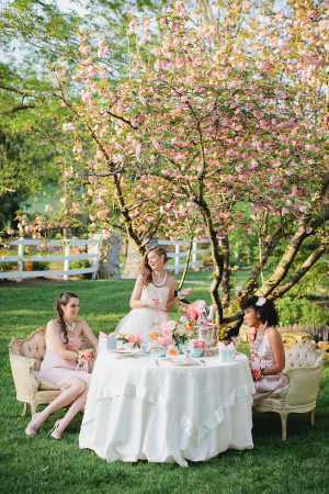 Bridesmaids Outdoor Tea Party
