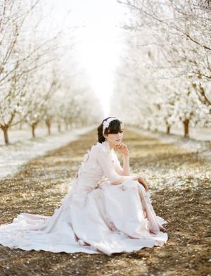 Claire Pettibone Blush Gown