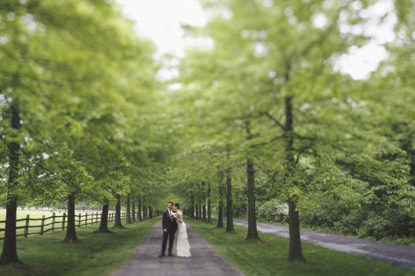 Stunning Wedding Portrait Under Trees