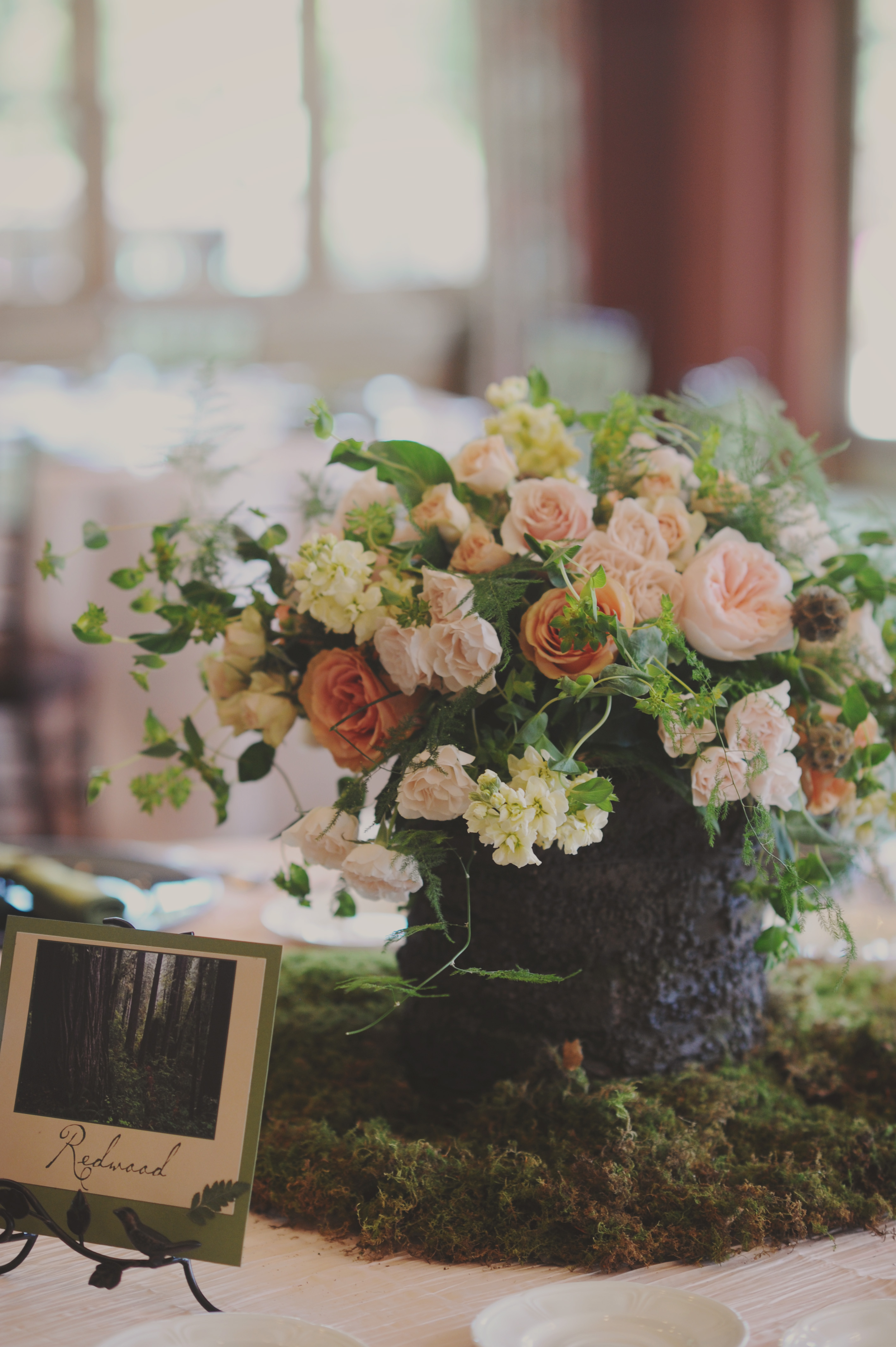 Peach rose and moss reception centerpiece elizabeth anne