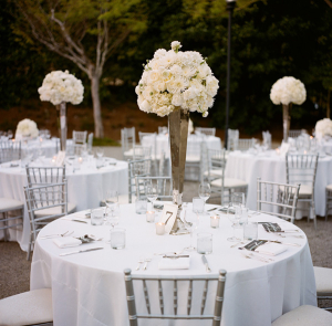 White Floral Topiaries in Glass Vases
