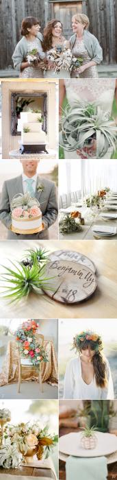 Air Plants Wedding Inspiration