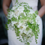 Baby Fern and White Flower Bouquet