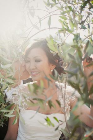 Classic Sonoma Wedding