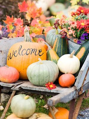 Pumpkin Welcome Display