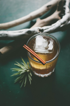 Autumn Punch Cocktail From Seth Hines For Scout Blog
