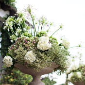 Hydrangea and Moss Florals