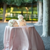 Puddled Pink Tablecloth on Cake Table