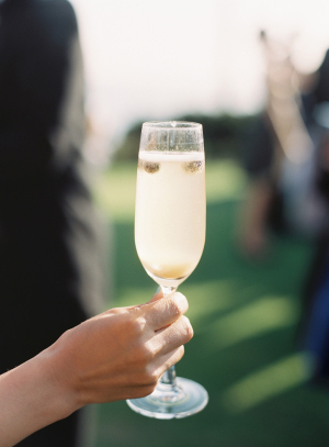 Champagne with Berries