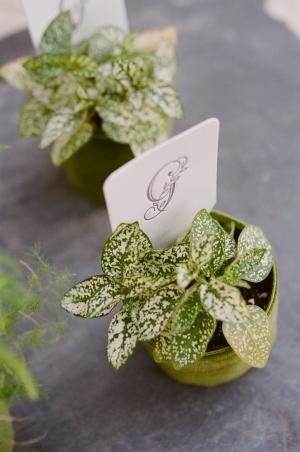 Letterpress Place Cards in Plants