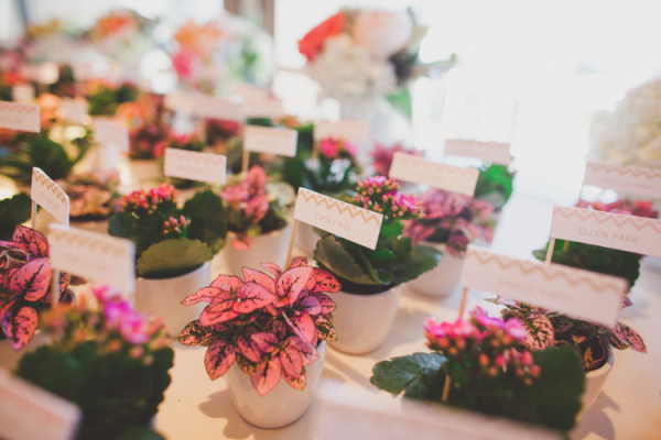 Potted Plant Place Cards