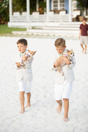 Ring Bearers with Dogs