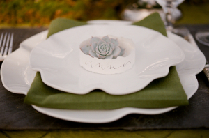 Succulent Place Card on Plate
