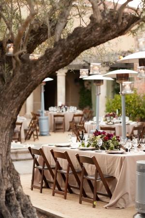 Vineyard Reception Under Trees