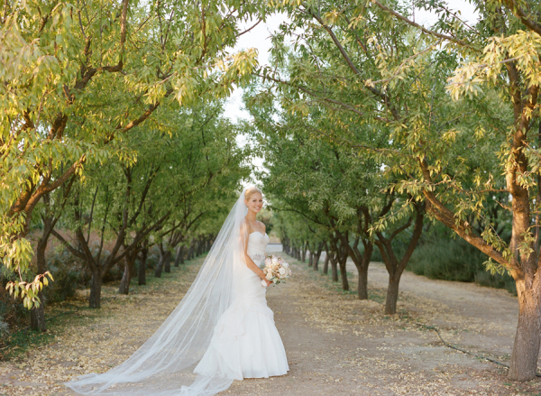 Bride at Vineyard Wedding