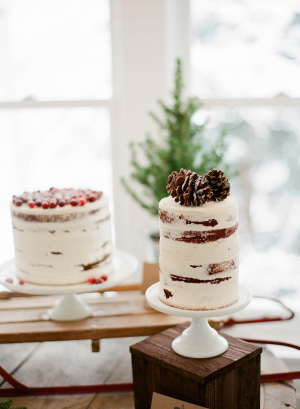 Cake with Pine Cones
