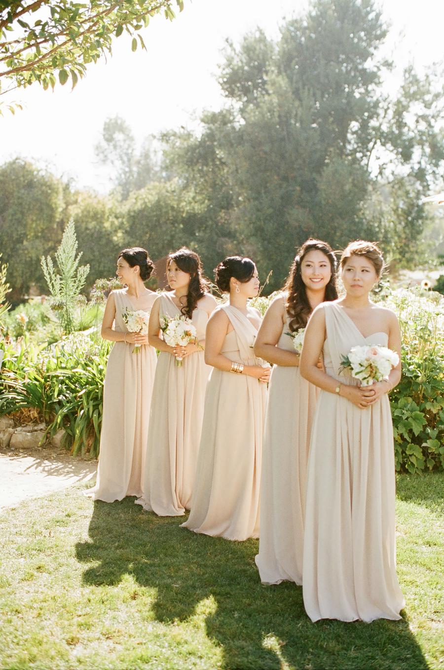 Champagne Bridesmaid Dresses Elizabeth Anne Designs The