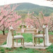 Elegant Pink Southern Wedding Ideas