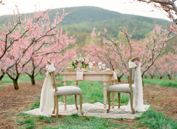 Elegant Pink Southern Wedding Ideas