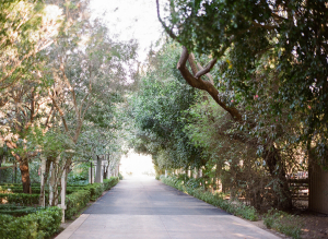 Hartley Botanica