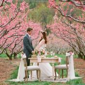 Pink Virginia Wedding Inspiration