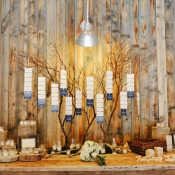 Place Cards on Branches