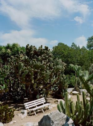 South Coast Botanic Garden California