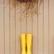 Yellow Hunter Boots for Bridesmaid