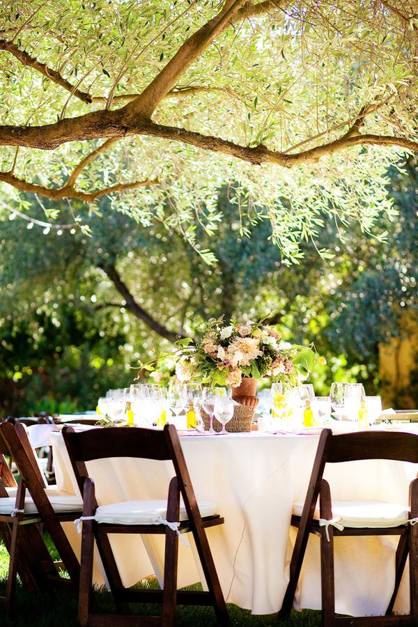 Backyard Vineyard Wedding Reception