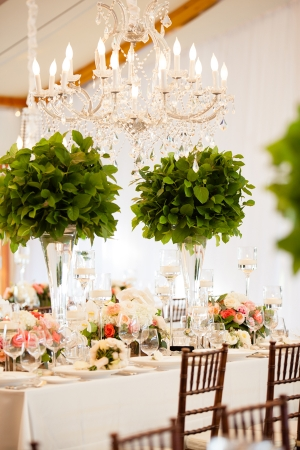 Chandeliers in Tents Reception Ideas