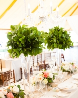 Green and Pink Reception