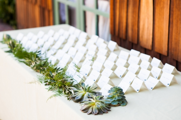 Greenery Garland and Succulent Decor